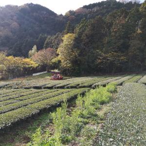 農地一時転用の農業委員会の印象