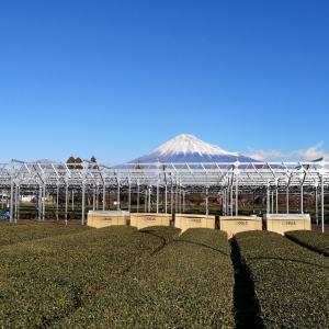 2019年元旦 富士山