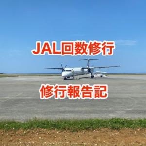 【JAL回数修行】沖縄離島ホッピングを利用したJAL回数修行のリアル|2020年第1回