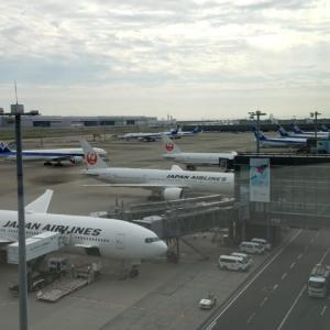 【JALANA特別対応】JALとANAのキャンセル無料特別対応期間が国際線でさらに拡大し6月30日まで