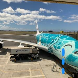 【さらばANAフライングホヌ】ついに8月のANAハワイ便も運休に!ハワイ州の事前検査プログラム開始延期もありしょうがなし