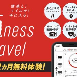結果発表!1年間毎日1万歩達成したらマイルはどれだけ貯まった?JAL Wellness&Travelは新規入会キャンペーンもしています