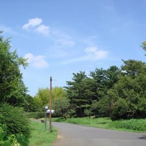 昭和記念公園、少し秋の気配