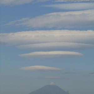 昭和記念公園・・②今現在の富士山
