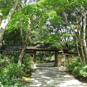 昭和記念公園(日本庭園)
