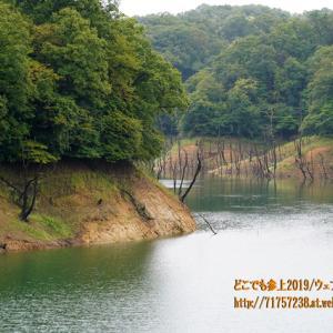 古洞ダムの周辺散策、富山市天文台やとやま古洞の森へ続く