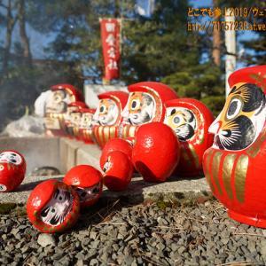雪の無い「愛宕社の火祭り」in 魚津神社、左義長の無い魚津の伝統行事!