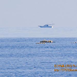 船が浮く!魚津の沖合で見た不思議な現象と、ミニ「上位蜃気楼」!!