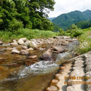 笹川に足を浸けた!暑い日の体の癒し、朝日町『共生の里 さゝ郷』