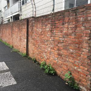 行き止まりの煉瓦塀  渋谷警察署管内