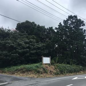 藤金富士塚  鶴ヶ島市藤金