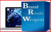 簡単3ステップせどり「Brand Resale Weapon」資金5千円で●●万円は本当か?