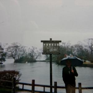 大沼湖 丹頂鶴 海・湖・池◎◎ 7位 北海道亀田郡七飯町