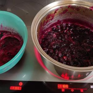 鉢植えSH系ブルーベリーのジャム作り