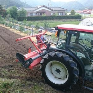 次期ブルーベリー露地植え用地の準備