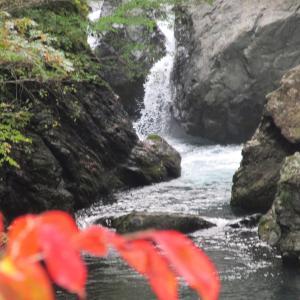 四国の秋の風景・・紅葉の里山!?