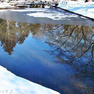 名曲百選第五章(58)肌をさす風の中 私は渡っていく凍った河を・・・