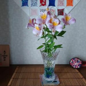 「百合水仙」今年豊作英さん。家