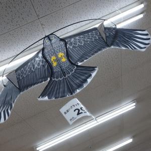 飛べカイト我果樹園の守り神
