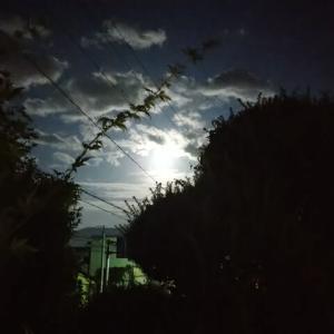 名月と十五夜を見る昨日今日