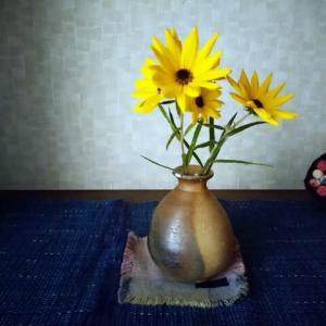 スタートもゴールも黄色  花の色