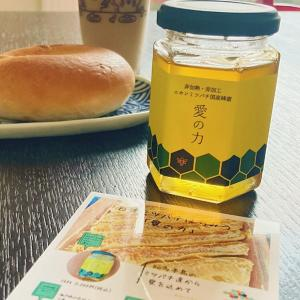 知多半島☆日本ミツバチの国産蜂蜜『愛の力』noko neko養蜂
