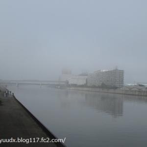 濃霧の朝の様子【尾久の原公園・公園北側のスーパー堤防】