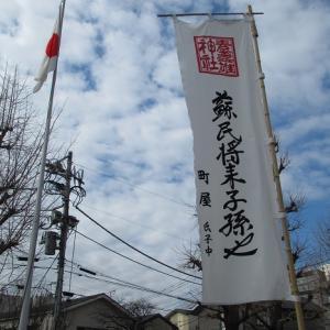【素盞雄神社その1】桃祭りの雛飾り、庚申塔群三基(区指定文化財)