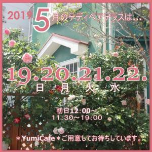 テディベアテラス5月のお知らせです。19,20,21.22日の4日間。バラが咲き始めています。