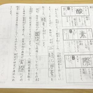 【公文】国語を始めて3年8か月~小2の進捗状況