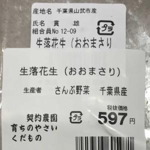 落花生『おおまさり』の塩茹で初体験!