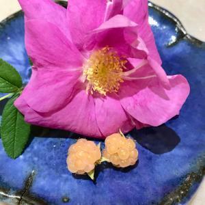 バラとラズベリーの収穫