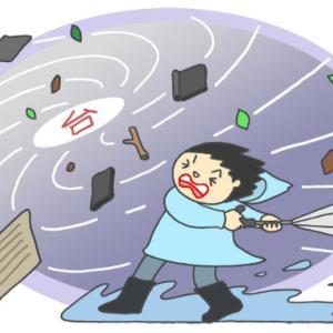 外人がビックリ「日本人は災害がおきても暴動を起こさずきちんとスーパーに並んでいます!」