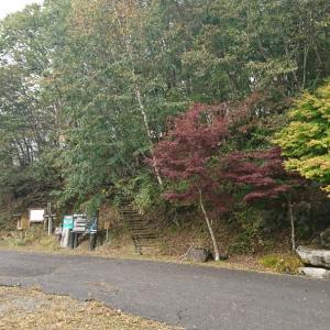 袈裟丸山の紅葉は…