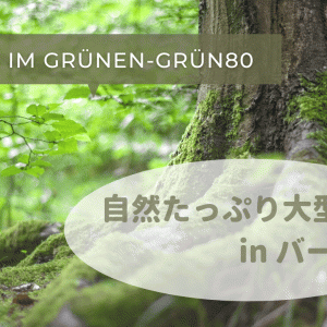 【スイス・バーゼル】ファミリー層におすすめの大型公園「Park im Grünen-Grün80」