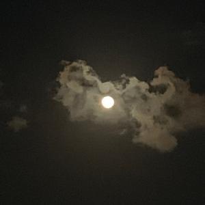 春の月を眺めて