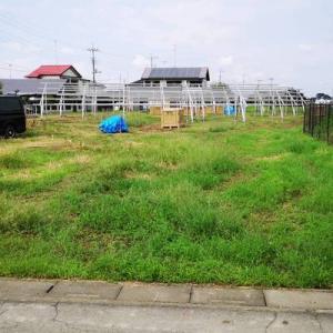 草刈りに行ってきました(^^)/