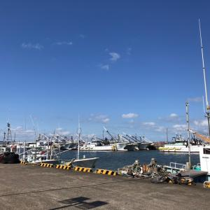 駅からハイキングしてみた①魚市場の見学はまにあわず