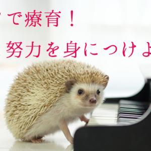 ピアノを習って自信と努力の仕方を学ぼう【発達障害のある子の習い事】