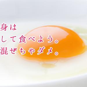 卵は完全栄養食:一日に食べていい卵は何個まで?