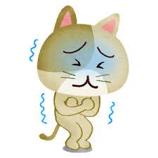 寒い!!(((( ;゚д゚)))
