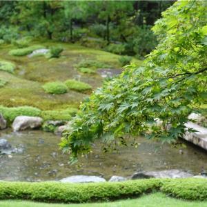 無鄰菴(むりんあん)は京都東山にあるカフェ併設の庭園。南禅寺周辺を散策。