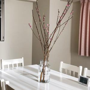 桃の花のあるサロンで
