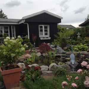 自分で作った第二の居場所デンマークのコロニハーベ(菜園場)に帰る、、、