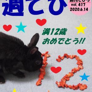 週刊てびち vol. 417