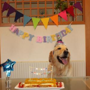 メルのお誕生日会をありがとう♪