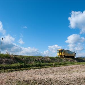 JR豊肥本線の黄列車は幸せ行き♬