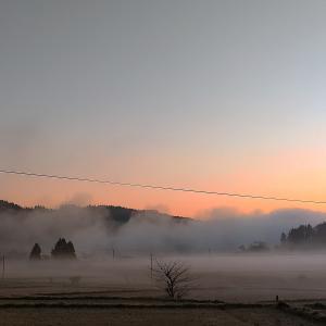 越生盆地の朝霧
