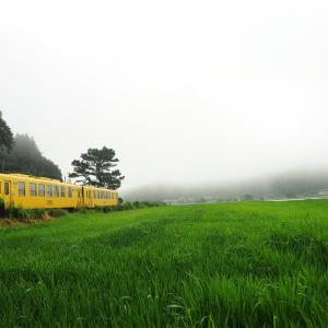 霧立つ朝のJR豊肥本線にて・・・。
