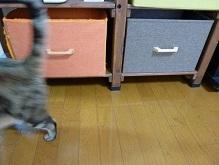 思いがけずに、家にある物で引き出しの代用ができました。(^^)/